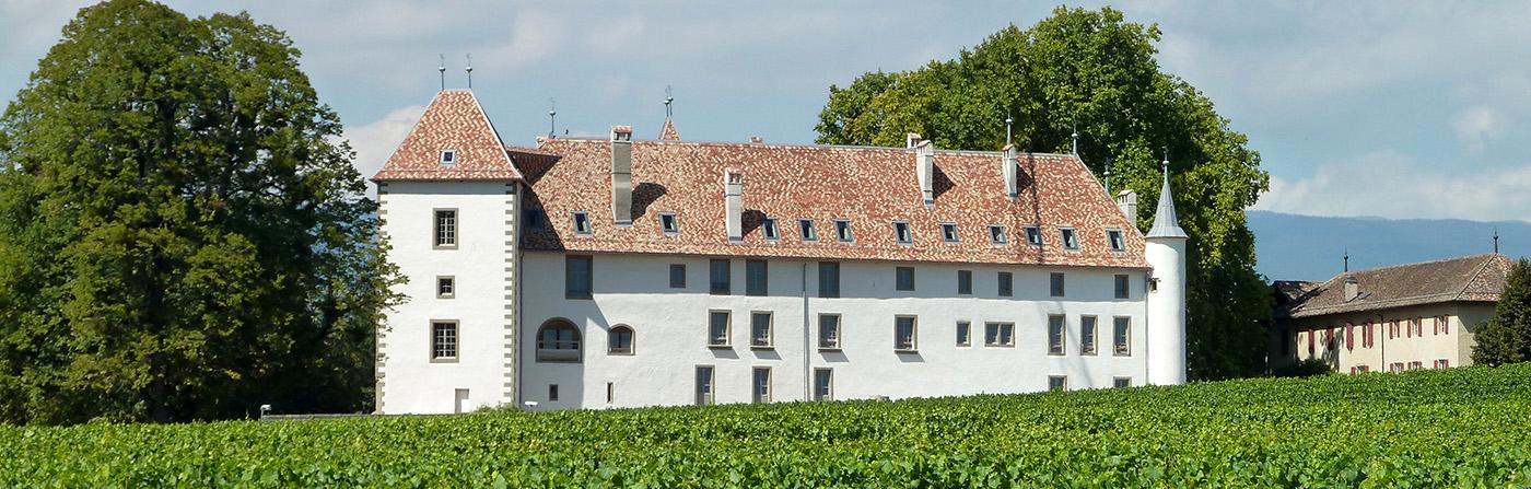 Chateau d'Allaman